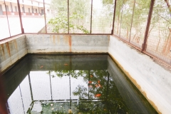 Fish Breeding Center